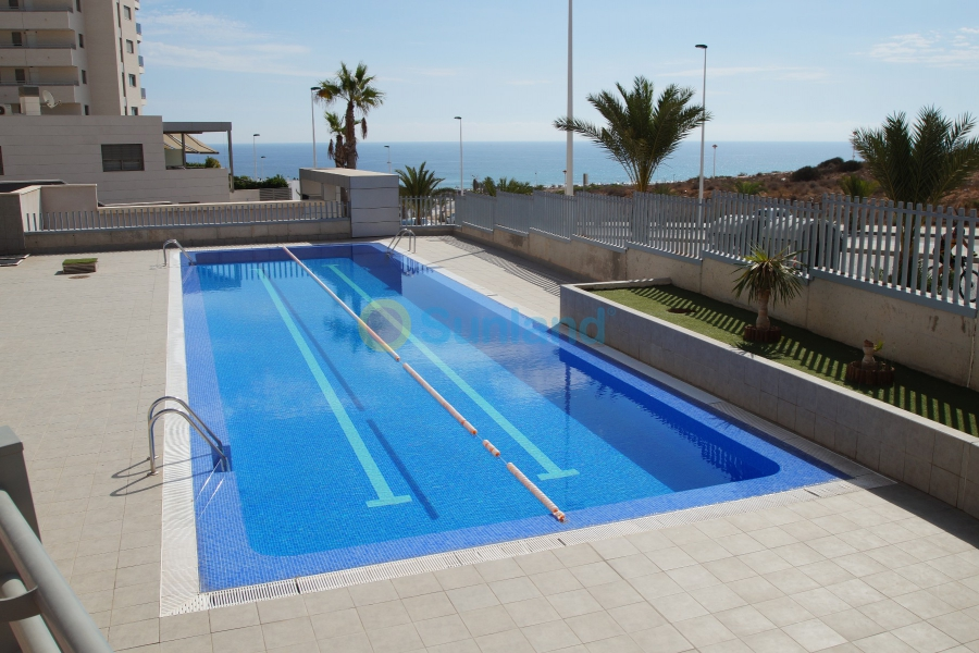 New Build - Apartment - Elche - Arenales del Sol